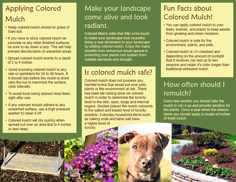 Safety Facts About Mulch