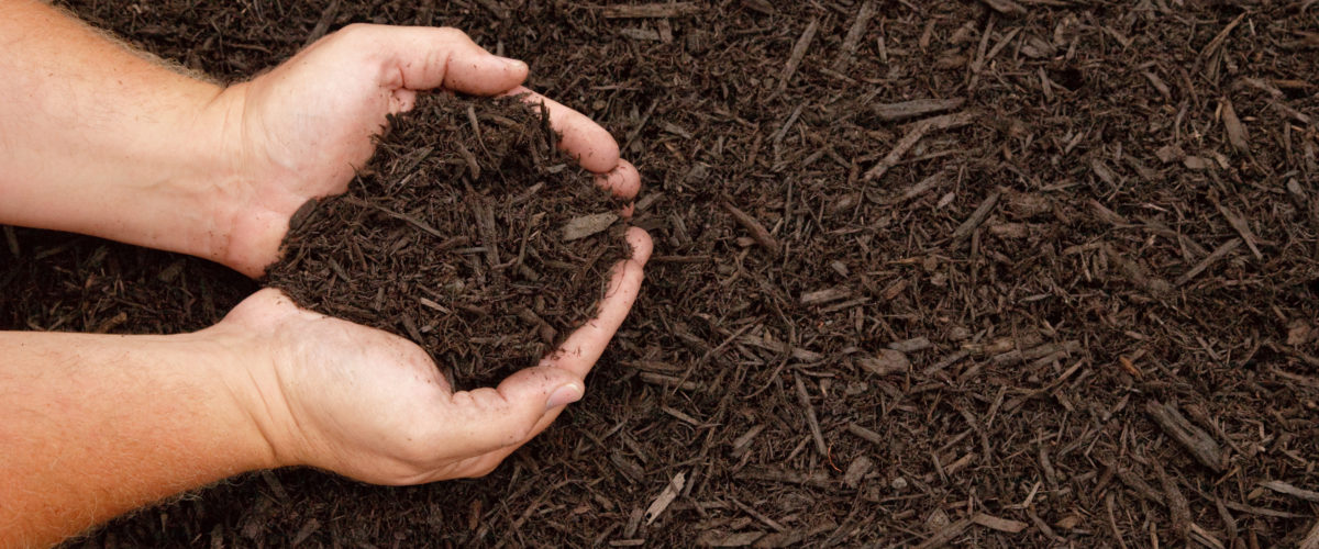 Mulch colored with premium brown dye by CMC Mulch Colorants.